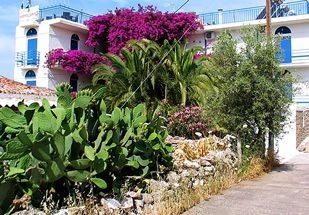 Hotel Hippocampus - Perdika - Aegina - special offer